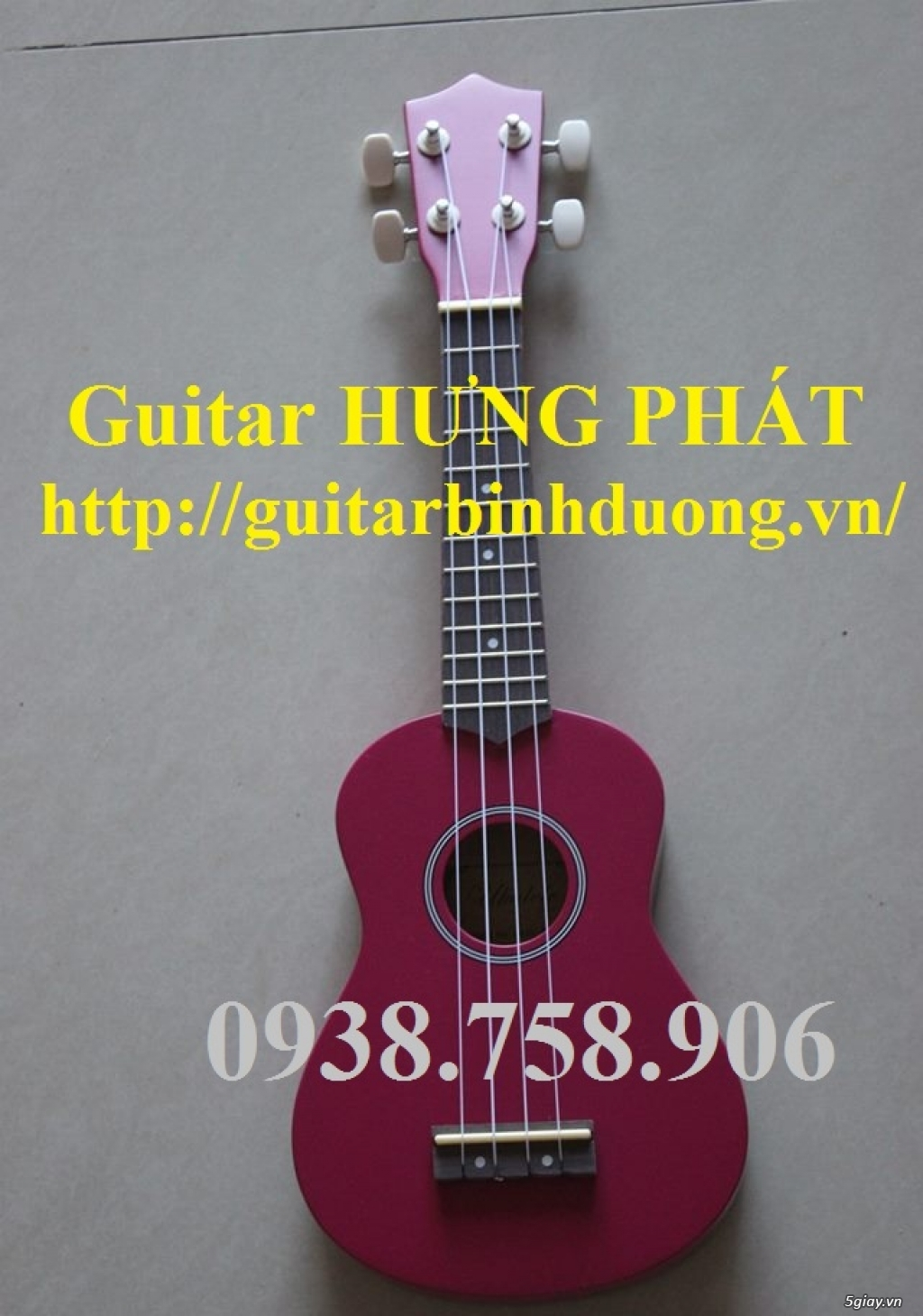 Bán đàn ukulele giá rẻ tp thủ dầu một bình dương - 15