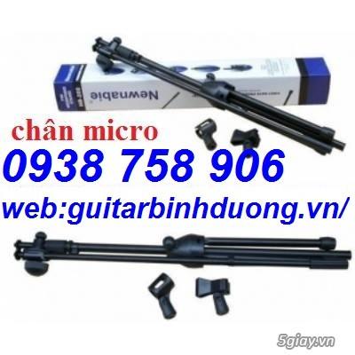 Phụ kiện guitar giá rẻ, guitar hưng phát bình dương bán phụ kiện guitar, phụ kiện nhạc cụ giá rẻ - 8