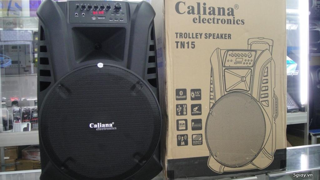 Loa kéo Thương hiệu VIỆT, Caliana TN15 MỚI 100% BASS 4 TẤC