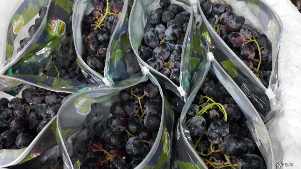 Anna Fruit - Trái cây nhập khẩu - 4