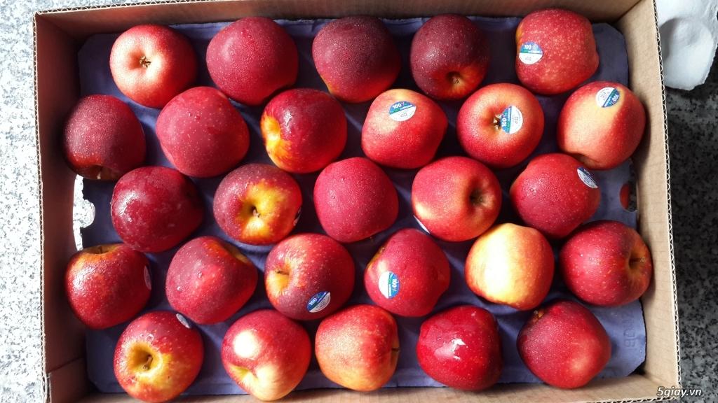 Anna Fruit - Trái cây nhập khẩu - 5