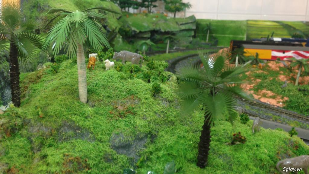 Cung cấp cây ,cỏ các loại  làm mô hình ...nhà cửa . - 1