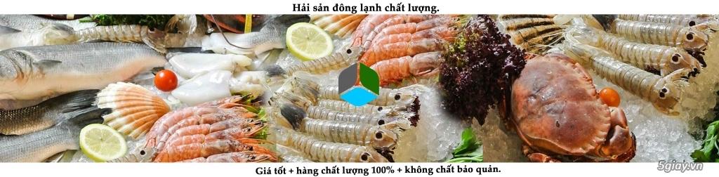 Hải sản đông lạnh giá rẻ, cung cấp đầu mực, mực nang, mực lá, mực fillet, bạch tuộc cho nhà hàng. - 6