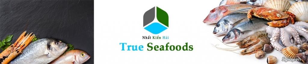 Hải sản đông lạnh giá rẻ, cung cấp đầu mực, mực nang, mực lá, mực fillet, bạch tuộc cho nhà hàng. - 7