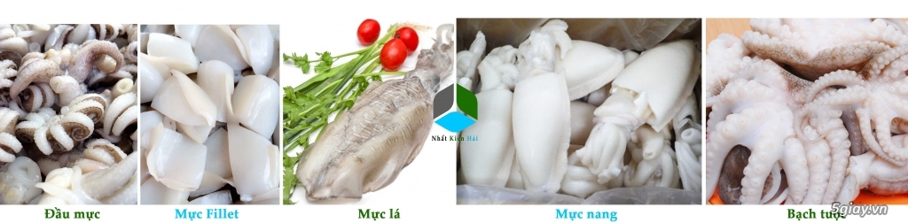 Hải sản đông lạnh giá rẻ, cung cấp đầu mực, mực nang, mực lá, mực fillet, bạch tuộc cho nhà hàng. - 9