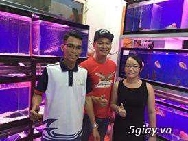 Cá La Hán: Thái Đỏ,King KamFa, King Việt, King Lai, Kim Cương, RedTexas - 35