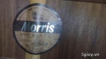 Acpoustic guitar Morris và Yamaha sản xuất tại Nhật - 30