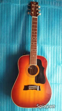Acpoustic guitar Morris và Yamaha sản xuất tại Nhật - 20
