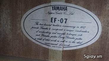 Acpoustic guitar Morris và Yamaha sản xuất tại Nhật - 34