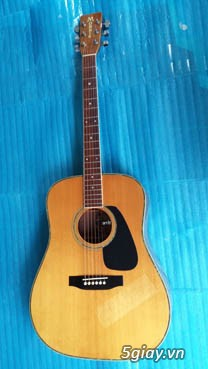Acpoustic guitar Morris và Yamaha sản xuất tại Nhật - 24