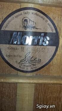 Acpoustic guitar Morris và Yamaha sản xuất tại Nhật - 21