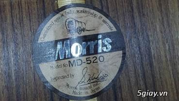Acpoustic guitar Morris và Yamaha sản xuất tại Nhật - 25