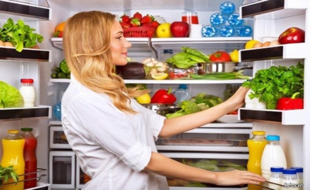 Tủ lạnh giá rẻ và những tính năng ưu việt. - 3