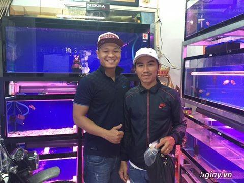 Cá La Hán: Thái Đỏ,King KamFa, King Việt, King Lai, Kim Cương, RedTexas - 45