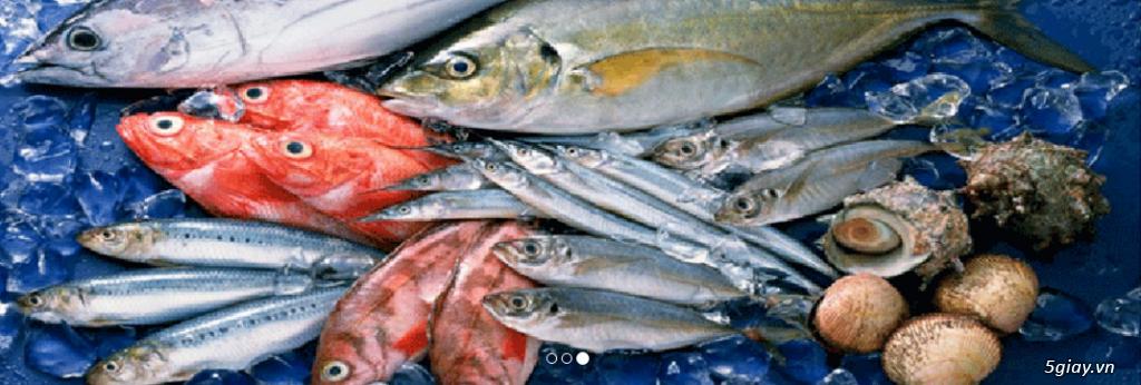 Lê Khang-Chuyên cung cấp sỉ và lẻ cá tươi sống: Cá Lăng, Cá Tầm, Cá Chép Giòn, Mú, Chẽm, Bớp, Baba.. - 6