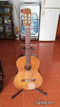 Matsouka guitar M 30, M 40, M50, M60N, M 85 có EQ - 6