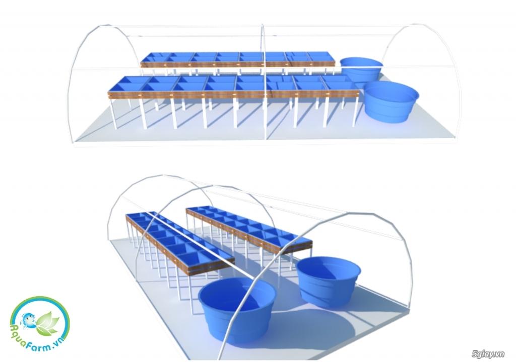 Aquafarm.vn - Hệ thống trồng cây, nuôi cá theo mô hình Aquaponics - 3