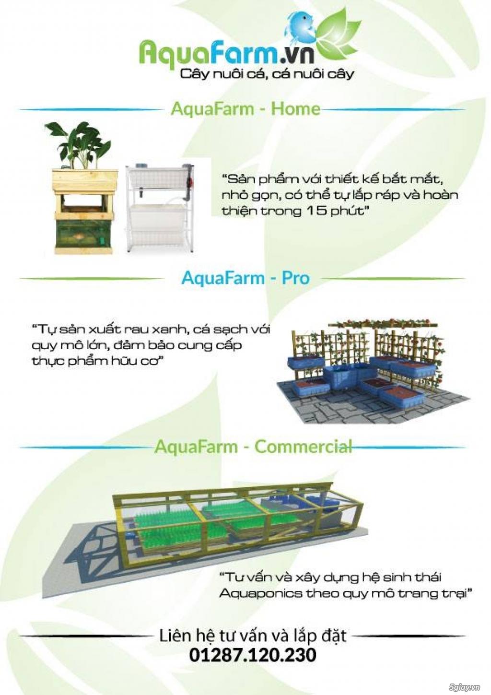 Aquafarm.vn - Hệ thống trồng cây, nuôi cá theo mô hình Aquaponics