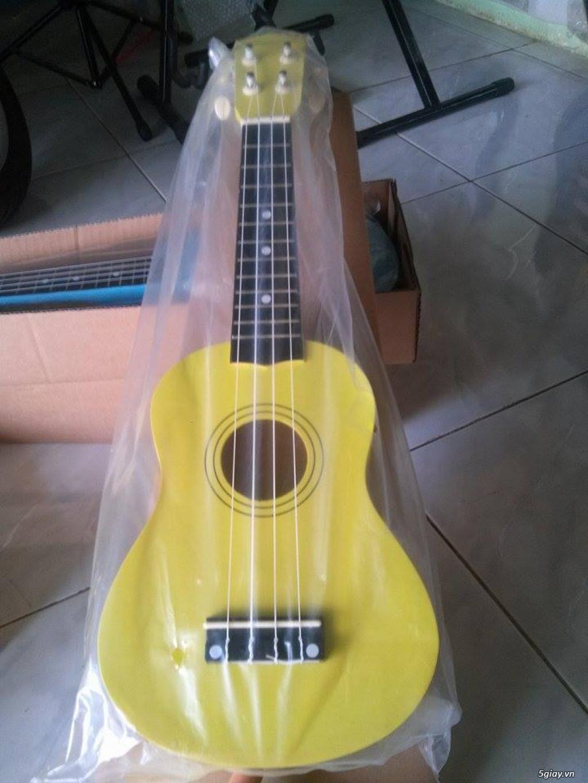bán đàn Ukulele giá rẻ tại tại cửa hàng nhạc cụ mới Bình Dương - 46