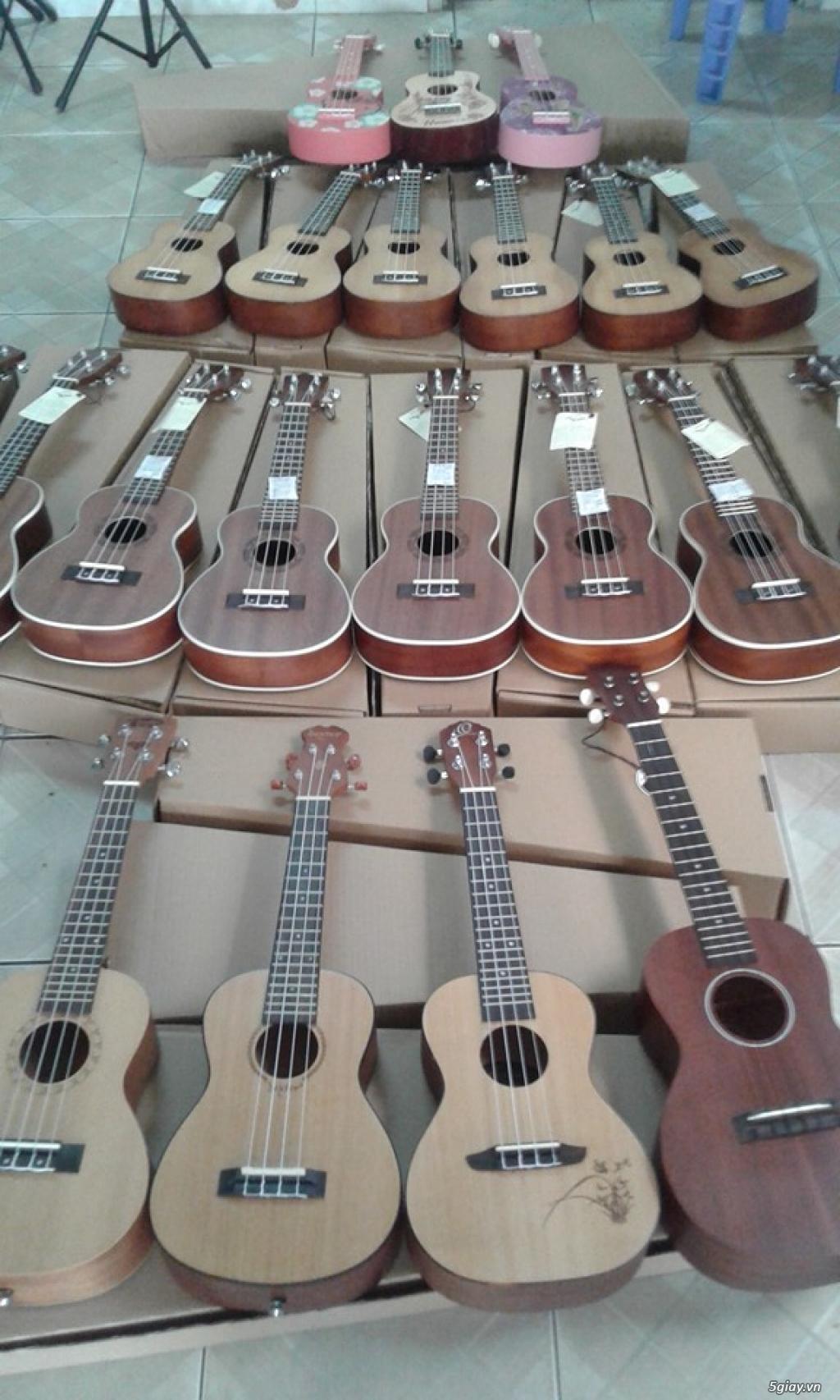 bán đàn Ukulele giá rẻ tại tại cửa hàng nhạc cụ mới Bình Dương - 16