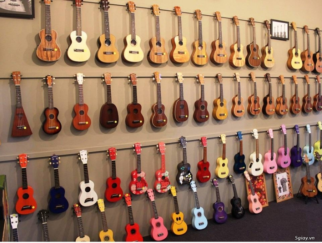 bán đàn Ukulele giá rẻ tại tại cửa hàng nhạc cụ mới Bình Dương - 4