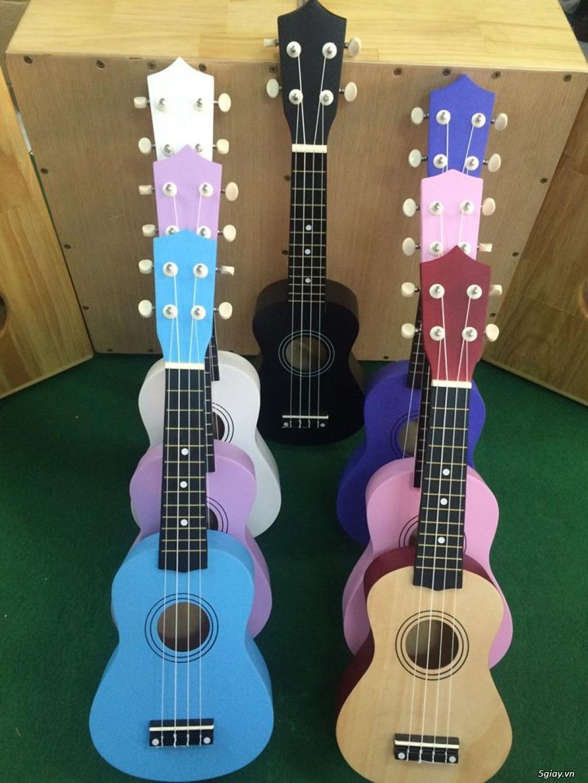 bán đàn Ukulele giá rẻ tại tại cửa hàng nhạc cụ mới Bình Dương - 17