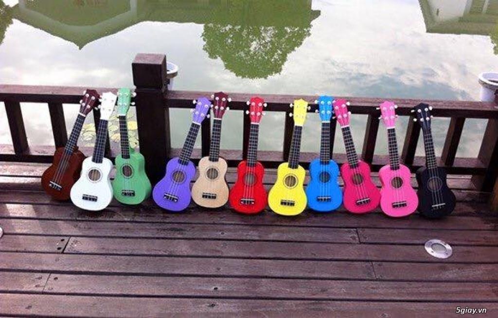 bán đàn Ukulele giá rẻ tại tại cửa hàng nhạc cụ mới Bình Dương - 12