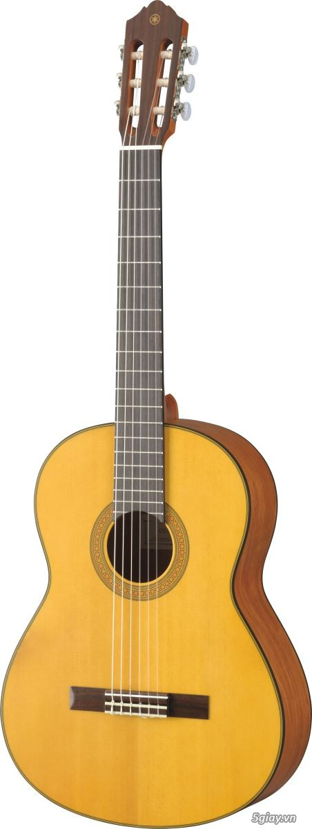 bán đàn Guitar điện phím lõm giá rẻ tại cửa hàng nhạc cụ Bình Dương - 30