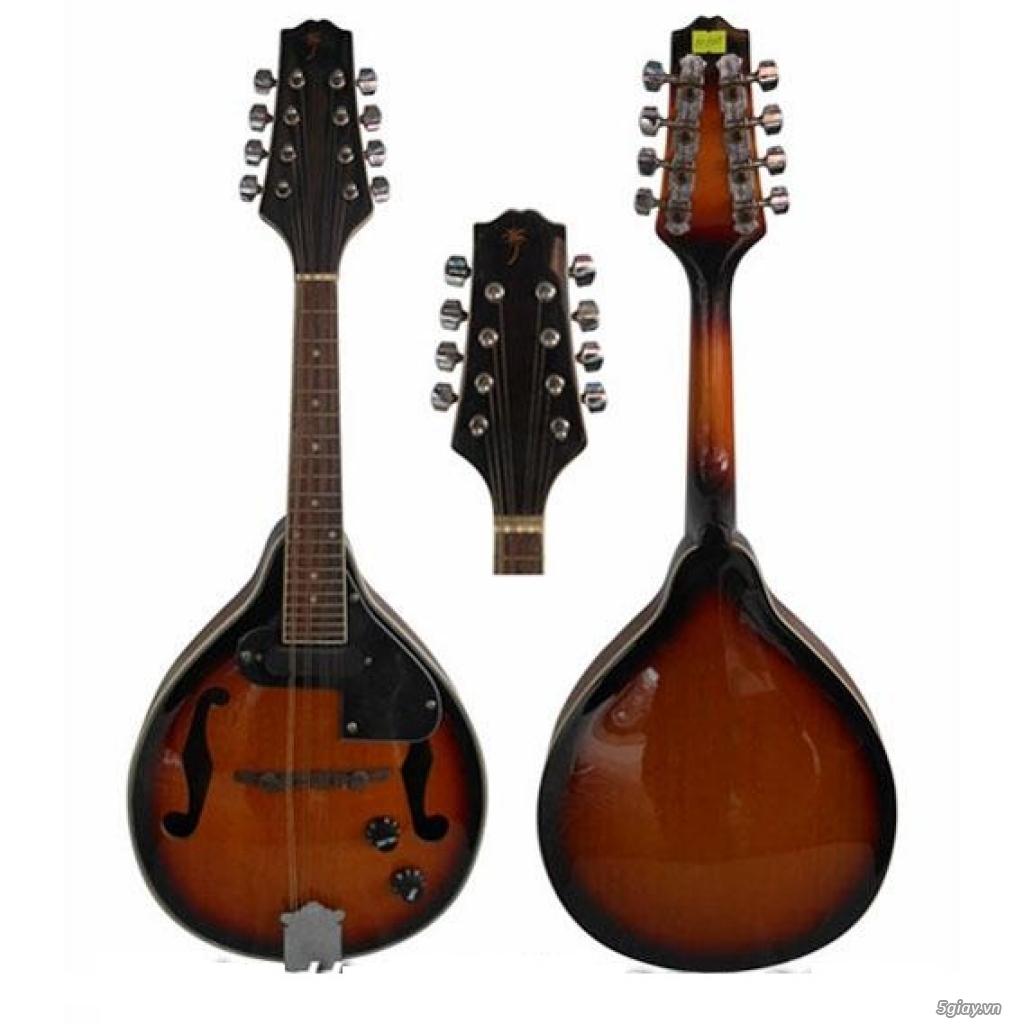 bán Đàn Tranh giá rẻ tại cửa hàng nhạc cụ mới Bình Dương - 11