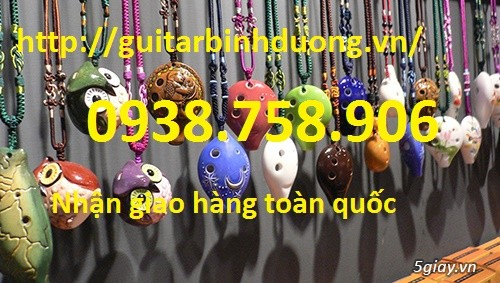 bán kèn Ocarina lổ giá rẻ tại cửa hàng nhạc cụ mới Bình Dương - 20