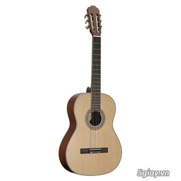 bán đàn Guitar điện phím lõm giá rẻ tại cửa hàng nhạc cụ Bình Dương - 28