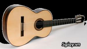 bán đàn Guitar điện phím lõm giá rẻ tại cửa hàng nhạc cụ Bình Dương - 29