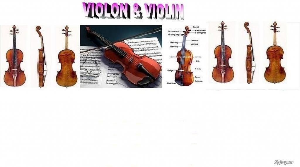 bán Đàn Tranh giá rẻ tại cửa hàng nhạc cụ mới Bình Dương - 24