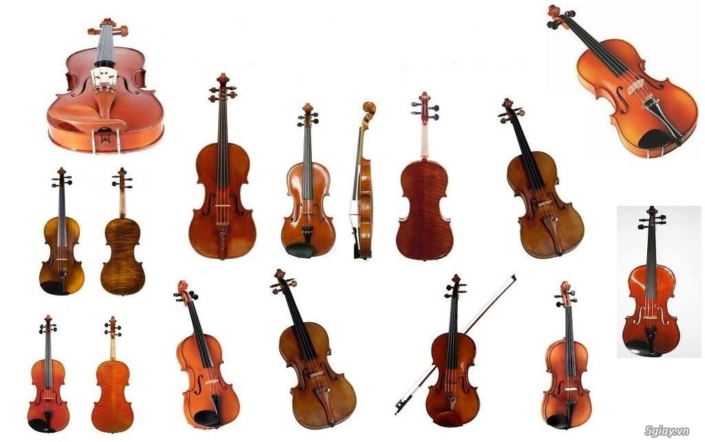 bán Đàn Tranh giá rẻ tại cửa hàng nhạc cụ mới Bình Dương - 23