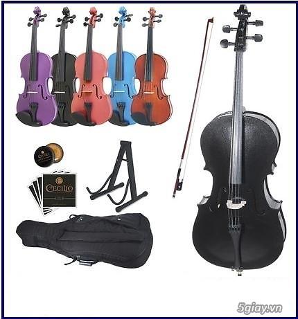 bán Đàn Tranh giá rẻ tại cửa hàng nhạc cụ mới Bình Dương - 28