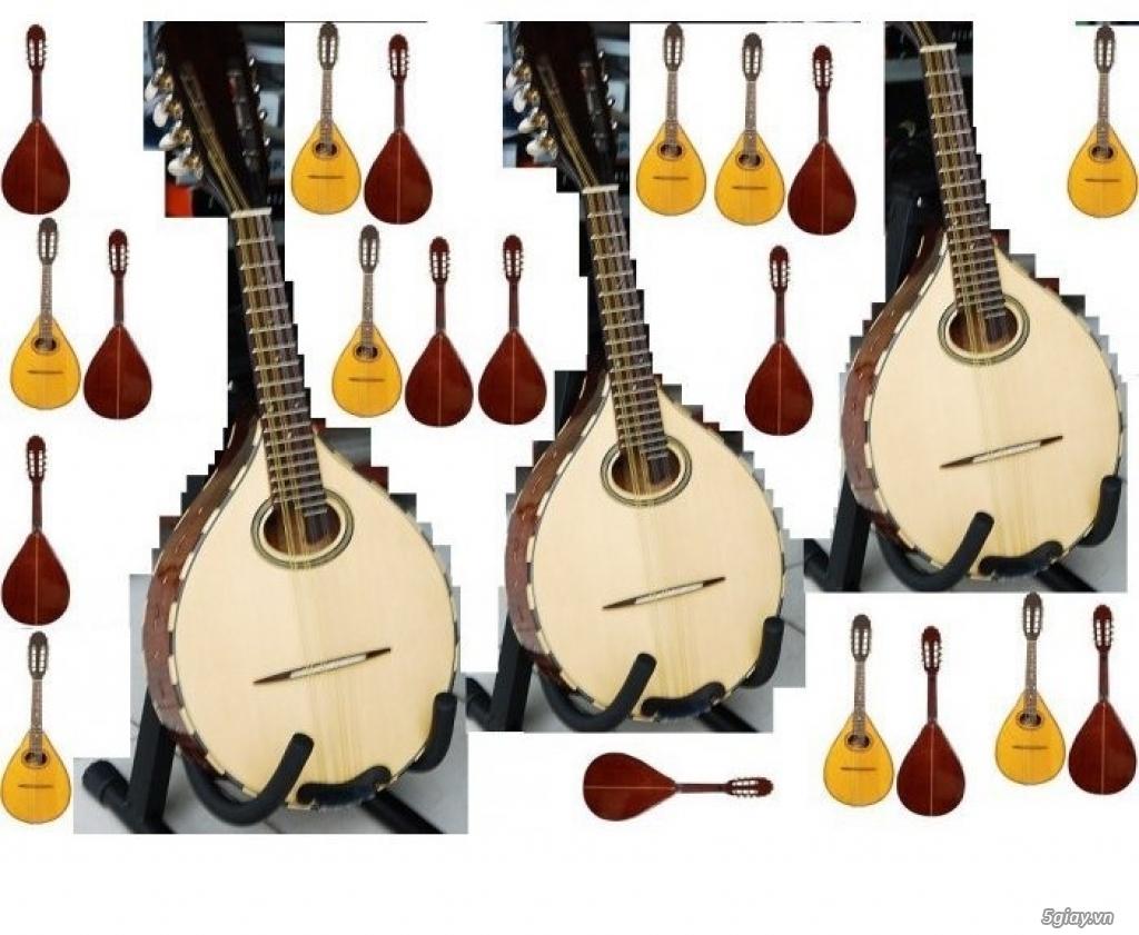 bán Đàn Tranh giá rẻ tại cửa hàng nhạc cụ mới Bình Dương - 10