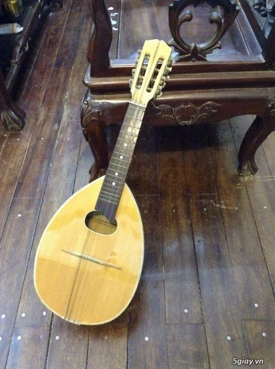bán đàn mandolin giá rẻ tại cửa hàng nhạc cụ mới Bình Dương - 18
