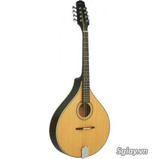 bán đàn mandolin giá rẻ tại cửa hàng nhạc cụ mới Bình Dương - 32