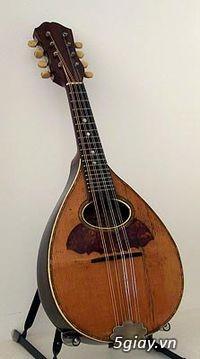 bán đàn mandolin giá rẻ tại cửa hàng nhạc cụ mới Bình Dương - 39