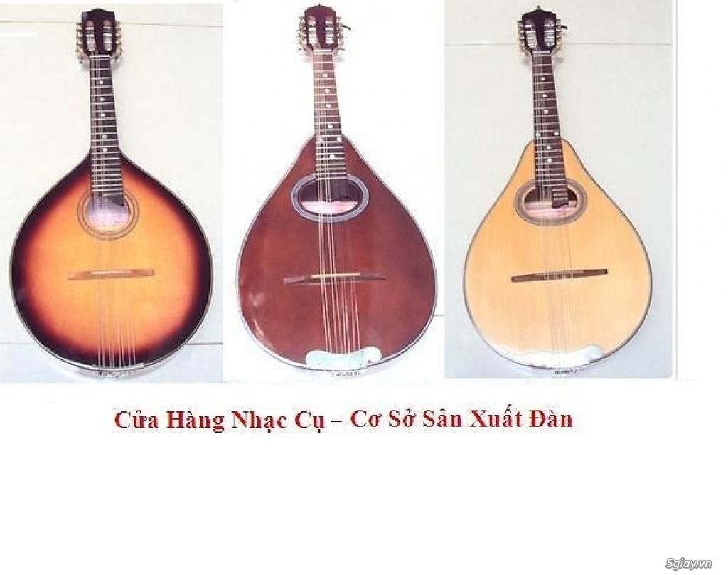 bán đàn mandolin giá rẻ tại cửa hàng nhạc cụ mới Bình Dương - 9