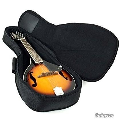 bán đàn mandolin giá rẻ tại cửa hàng nhạc cụ mới Bình Dương - 41