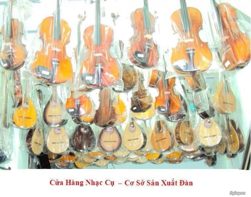 bán đàn mandolin giá rẻ tại cửa hàng nhạc cụ mới Bình Dương - 38