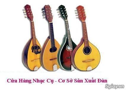 bán đàn mandolin giá rẻ tại cửa hàng nhạc cụ mới Bình Dương