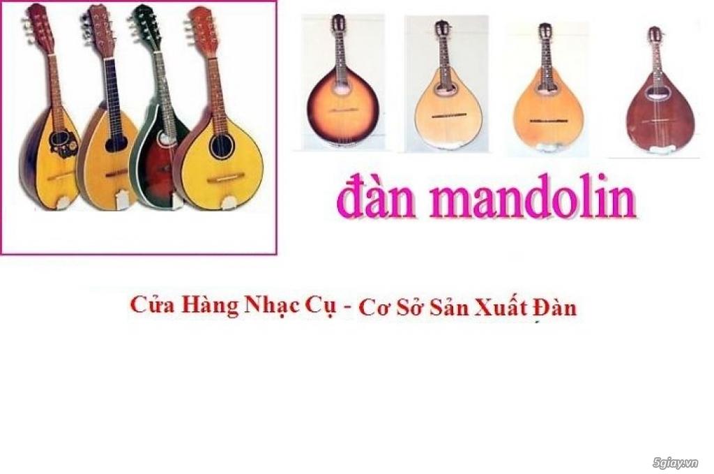 bán đàn mandolin giá rẻ tại cửa hàng nhạc cụ mới Bình Dương - 10
