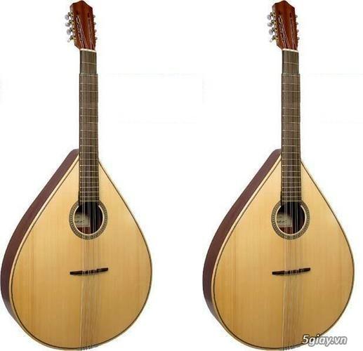 bán đàn mandolin giá rẻ tại cửa hàng nhạc cụ mới Bình Dương - 11