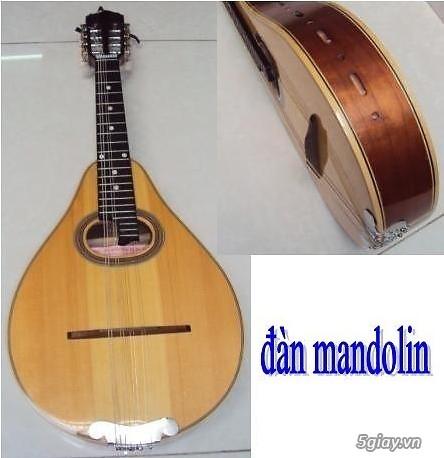 bán đàn mandolin giá rẻ tại cửa hàng nhạc cụ mới Bình Dương - 27