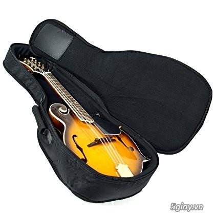 bán đàn mandolin giá rẻ tại cửa hàng nhạc cụ mới Bình Dương - 42