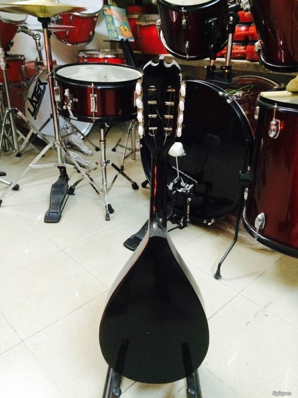 bán đàn mandolin giá rẻ tại cửa hàng nhạc cụ mới Bình Dương - 23