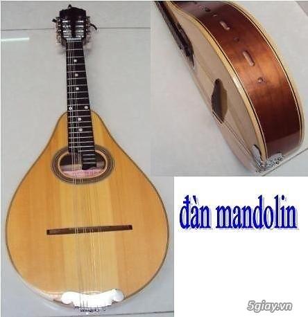 bán đàn mandolin giá rẻ tại cửa hàng nhạc cụ mới Bình Dương - 1