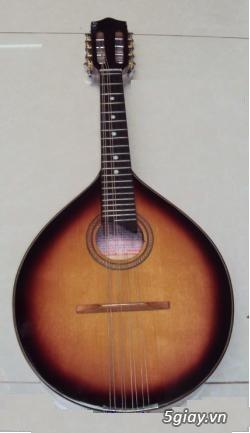 bán đàn mandolin giá rẻ tại cửa hàng nhạc cụ mới Bình Dương - 5